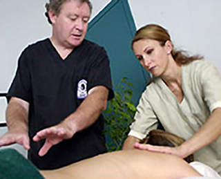 massage-training-ontario